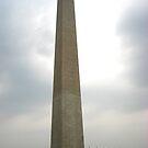 Washington Monument  by Christina Tang