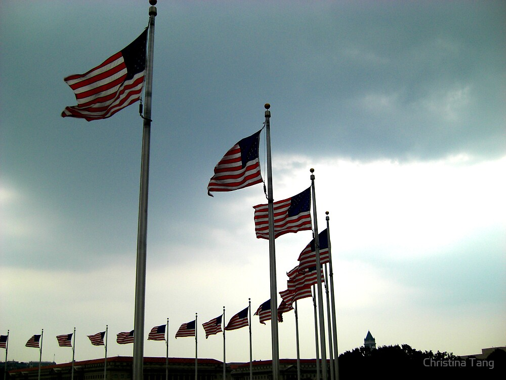 American Flag Surrounds by Christina Tang