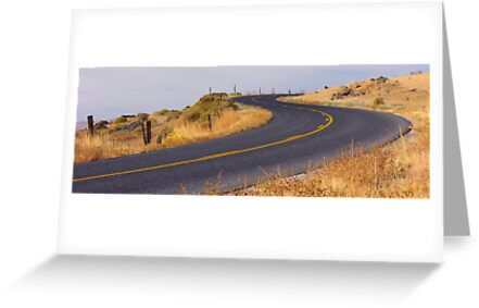 Winding Road by cshphotos