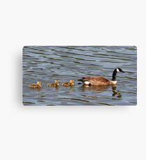 Mother and Three Babies Canvas Print
