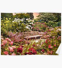 Rose Garden Sunset Poster
