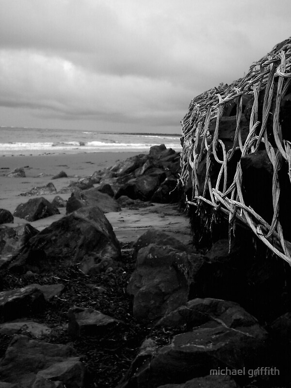kept ashore by michael griffith