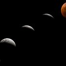 Lunar Eclipse by Yip Huang