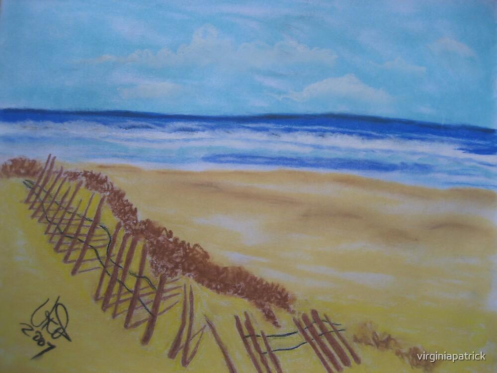 Beach Path by virginiapatrick
