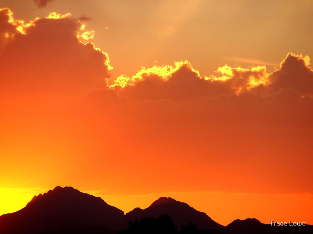 Arizona Blaze by Trace Lowe