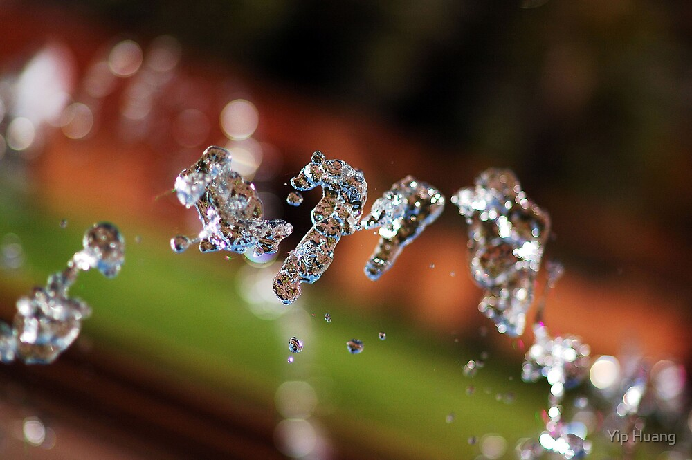 Dancing Crystals by Yip Huang