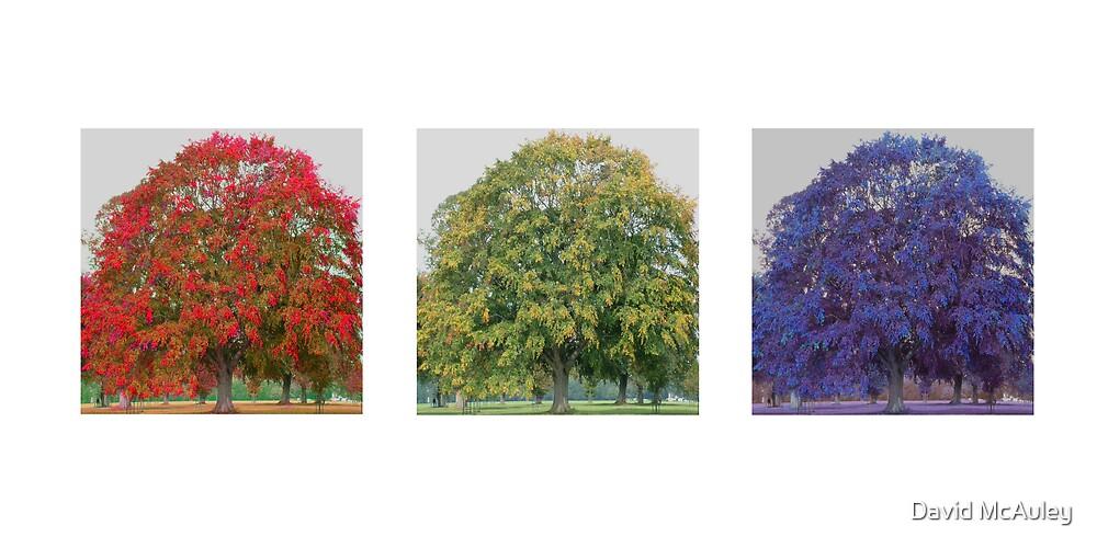 Red, Green, Blue by David McAuley