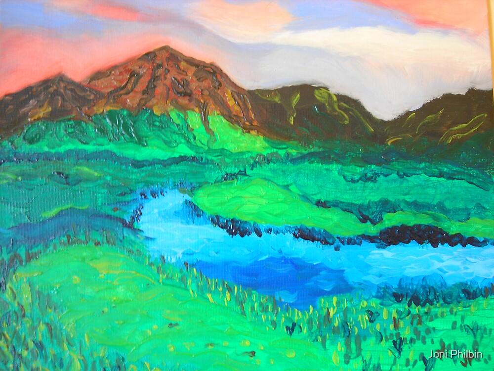 Connemara mountains by Joni Philbin