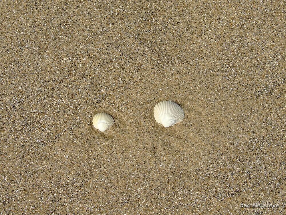 Shells on Cleethrorpes beach by barnsleysteve
