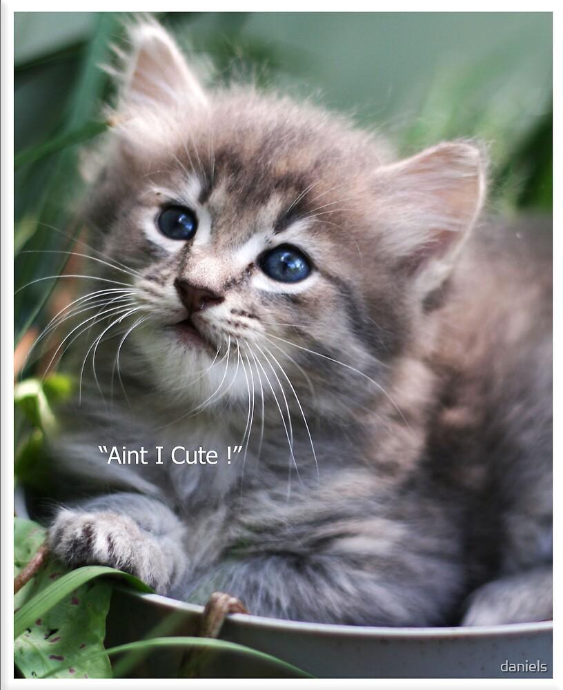 aint I cute ! by daniels