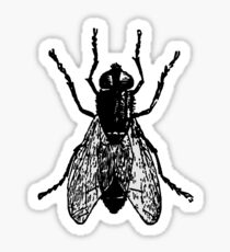 THE FLY, FLY, House Fly, Insect, Bug Sticker