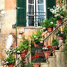 Stairway Garden-Galles, Italy by Deborah Downes