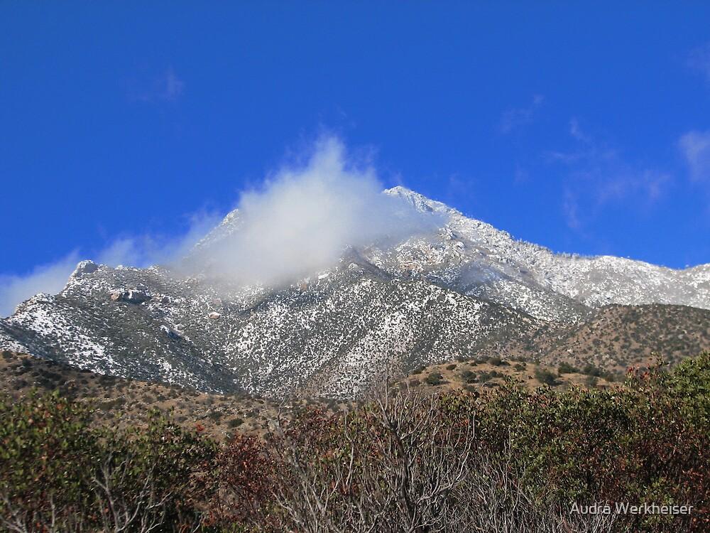 Miller Peak by Audra Werkheiser