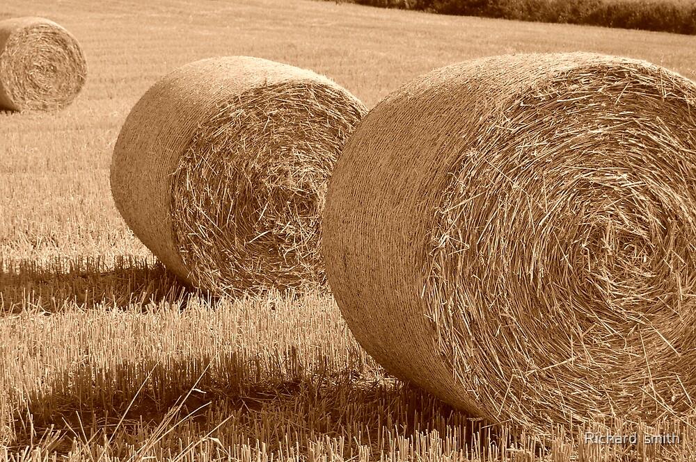 Life as a farmer by Richard  smith