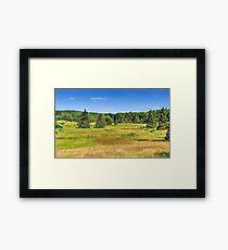 Lush Fields Framed Print