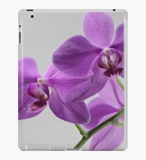 orchid flowers macro shot iPad Case/Skin