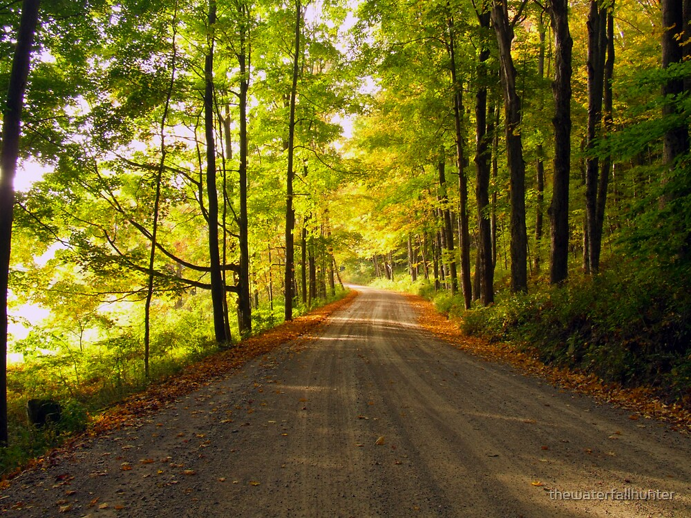 Autumn Road by thewaterfallhunter