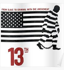 13th Amendment Poster