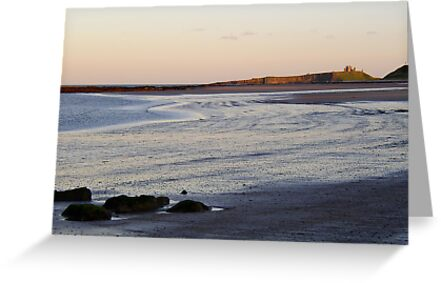 Dunstanburgh Beach by shakey