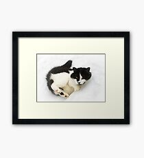 Snow Angel Kitty Framed Print