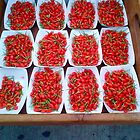 Red Peppers by Christine  Wilson