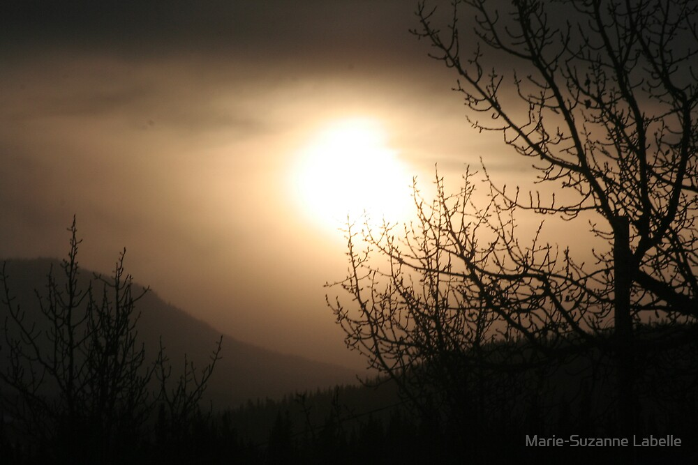 Yukon's Winter Solstice by Marie-Suzanne Labelle