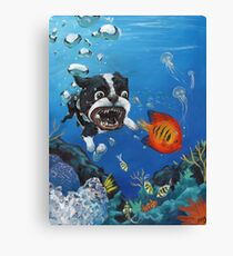 Sea Dog Canvas Print