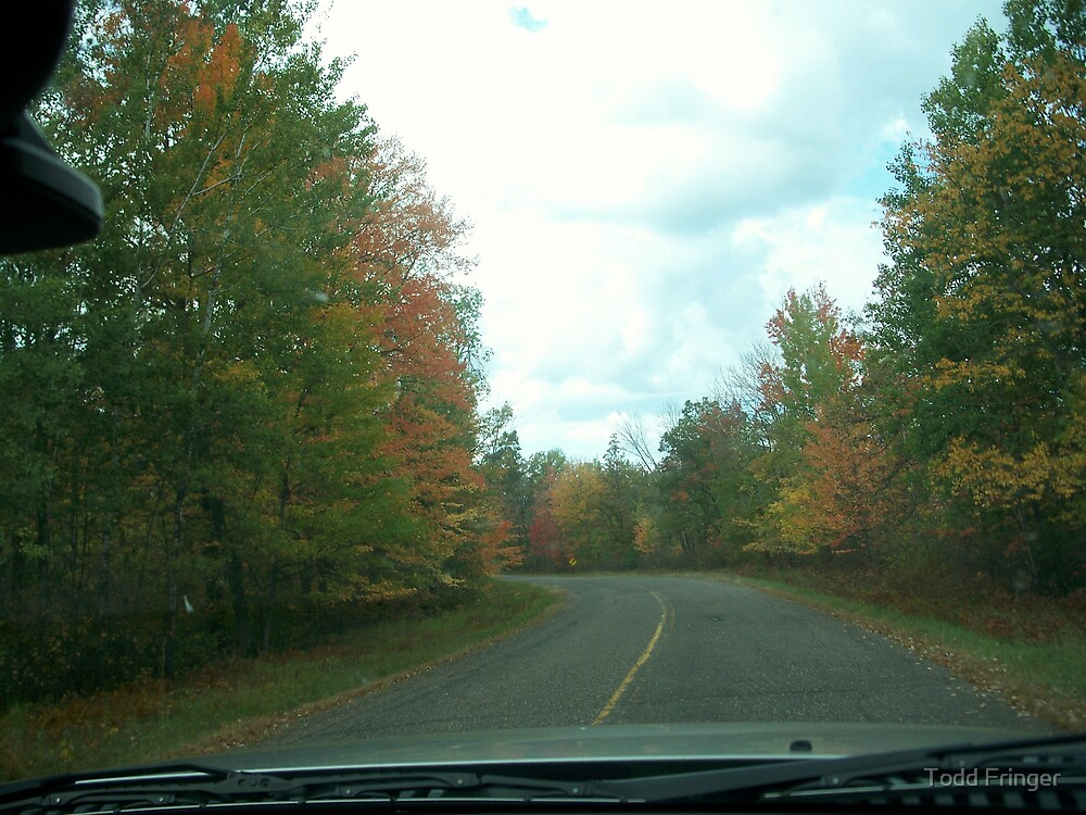 Country Road - Autumn by Todd Fringer