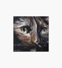 Calico Cat Art Art Board