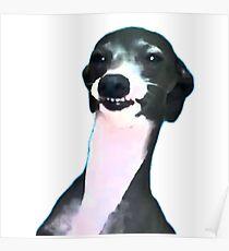 Kermit Dogboy Poster