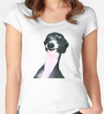 Kermit Dogboy Women's Fitted Scoop T-Shirt