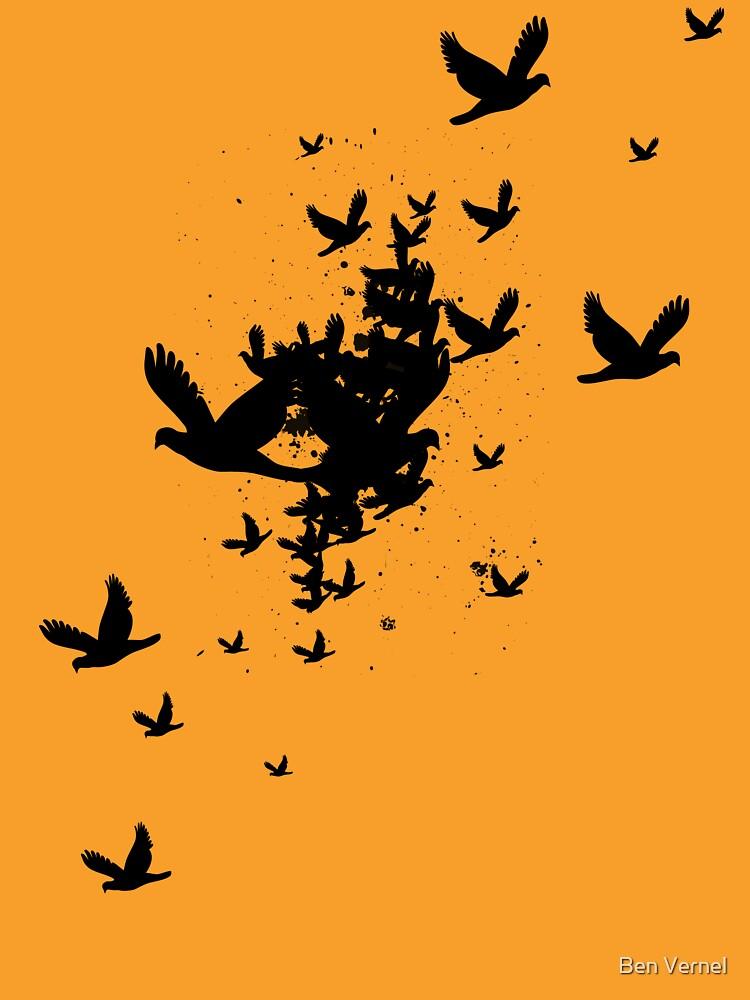 Birds For Sarah by benj