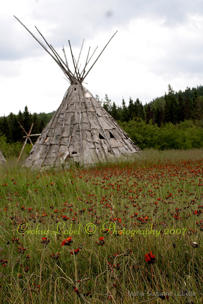 Handmade Tipi by Marie-Suzanne Labelle
