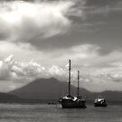 Moody Port Douglas by kristin