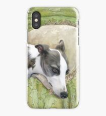 Whippet in Repose iPhone Case