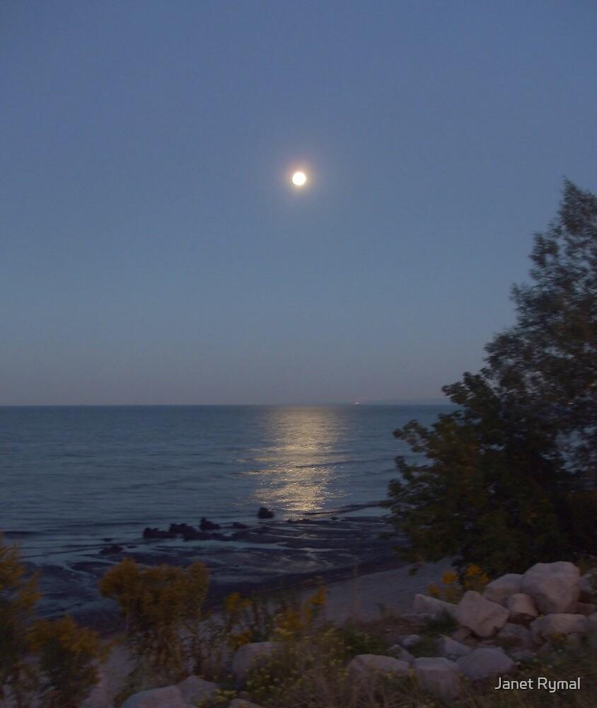 Full Moon Rising by Janet Rymal