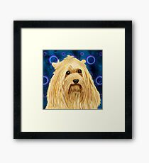 Digitally Painted Blond Hairy Yorkshire on Blue Framed Print