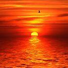 Spanish Sunrise by Ann Chane