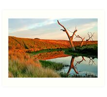 Lagoon on Thompson's Creek Art Print