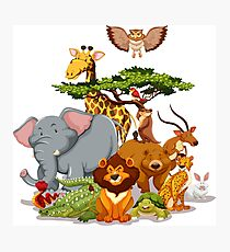 Jungle Animal Friends Photographic Print
