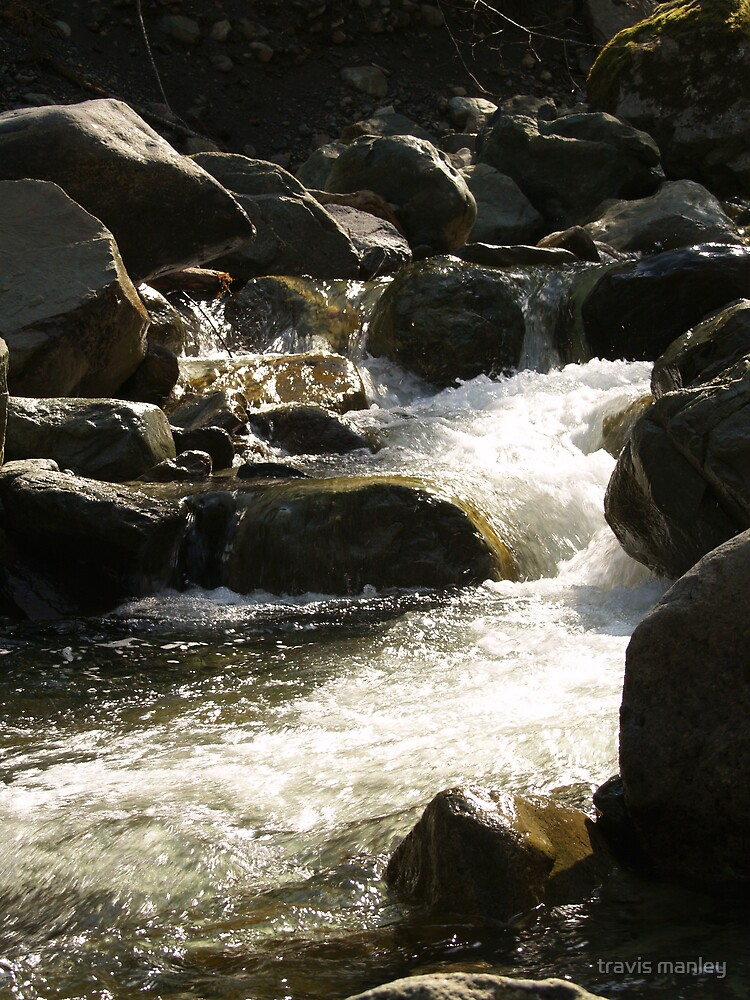 Stream Close Up by travis manley