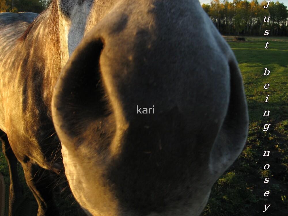 Nosey by kari