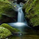 Enchanting Creek by greencardigan