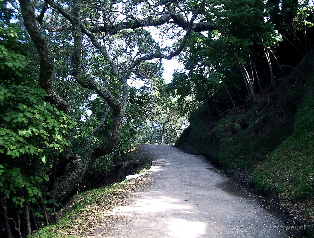 Mt Manganui Track by karenvowell