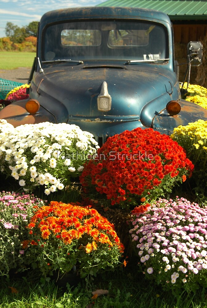 Blue Car And Mums by Kathleen Struckle
