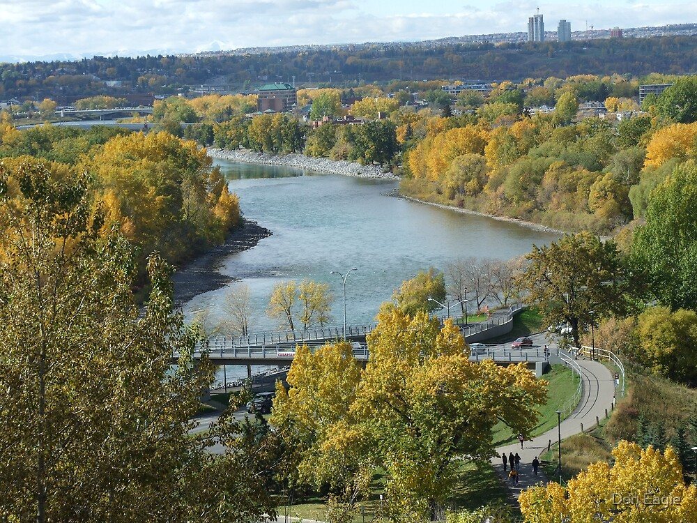 Fall on the Bow River II by Don Eagle