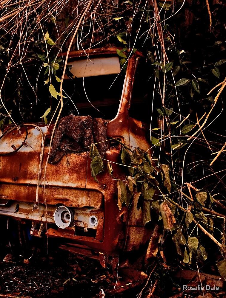 Rusty truck  by Rosalie Dale
