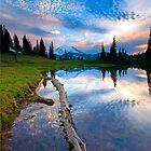 Mountain Majesty by DawsonImages