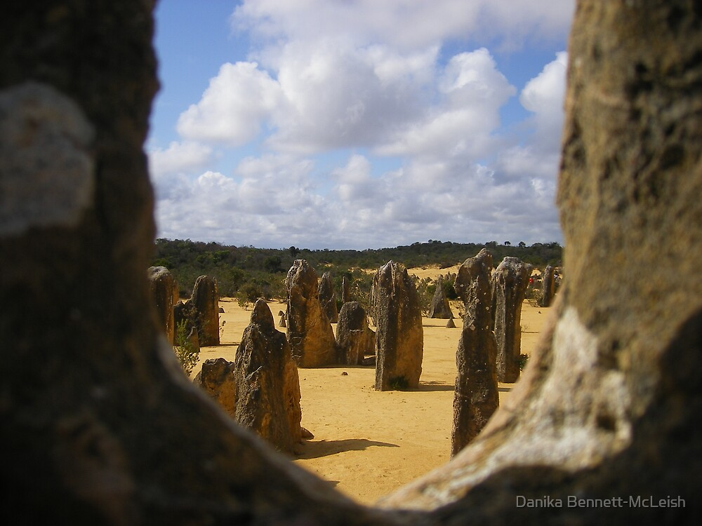 Pinnacles by Danika & Scott Bennett-McLeish