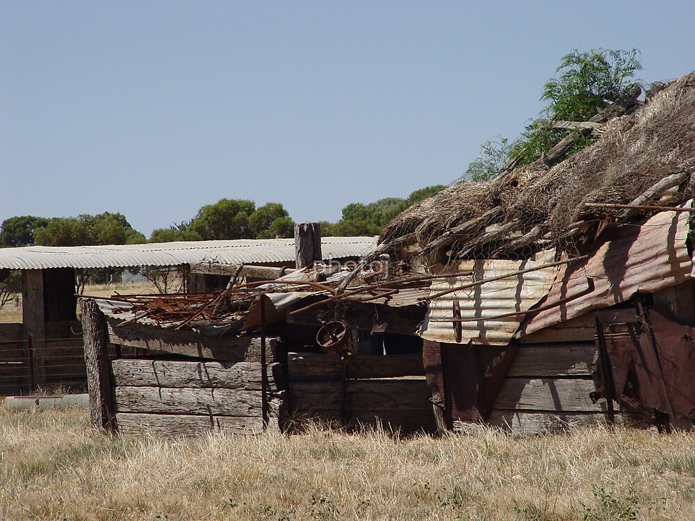Australia's Homestead by photoj